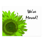 Cambio verde de la flor del arte pop de postal de