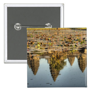 Cambodia, Angkor Wat. Reflection of temple Pinback Button