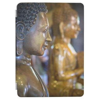 Cambodia, Phnom Penh. Buddha statues iPad Air Cover