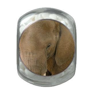 Cambodian Elephant Glass Jar