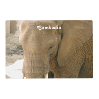 Cambodian Elephant Placemat