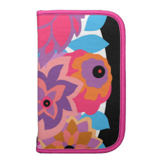 CAMBRIA in Hot Pink and Blue Organizer