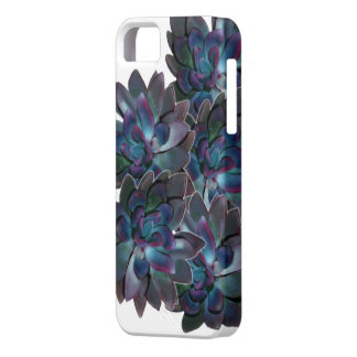 Cambria In January iPhone SE/5/5s Case