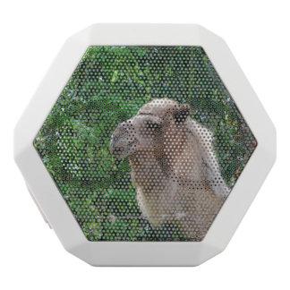 camel-20 white boombot rex bluetooth speaker