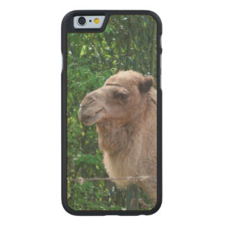 camel-20 carved® maple iPhone 6 case
