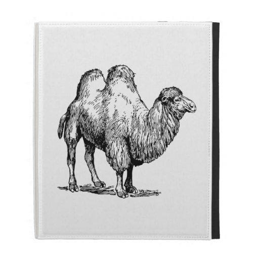 Camel 2 iPad folio cover