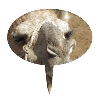 Camel Achmed Cake Picks