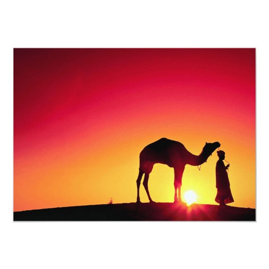 Camel and driver at sunset, India Card