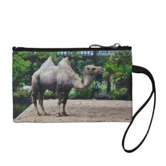 Camel Coin Purse