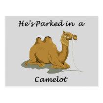 Camel Camelot Humor Postcard