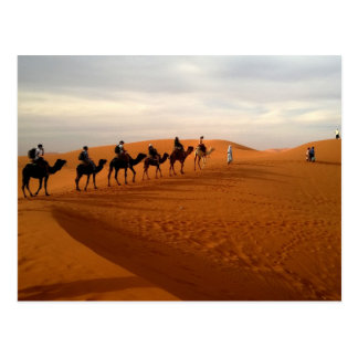 Camel caravan desert beautiful scenery postcard