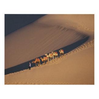 Camel caravan on the desert, Dunhuang, Gansu Panel Wall Art