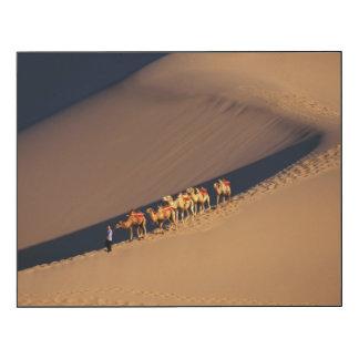 Camel caravan on the desert, Dunhuang, Gansu Wood Wall Art