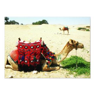 Camel Card