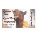 Camel Collage Business Cards