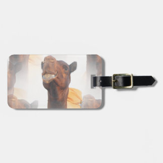 Camel Collage Luggage Tag