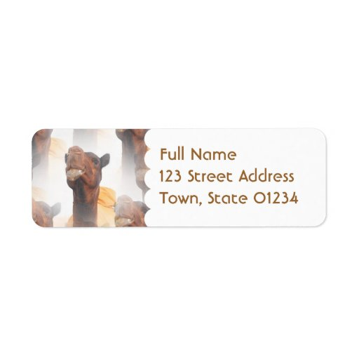 Camel Collage Mailing Label
