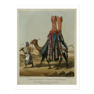 Camel Conveying a Bride to her Husband, engraved b Postcard
