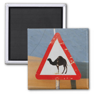 Camel Crossing Club Afgjhanistan Chapter 2 Inch Square Magnet