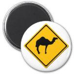 Camel Crossing Magnet