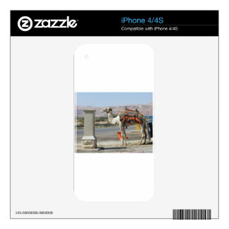 Camel Decals For The iPhone 4S