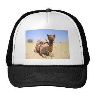 Camel Desert Middle East Peace Love Nature Destiny Mesh Hat