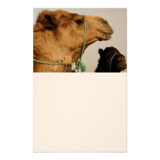 Camel Desert Middle East Peace Love Nature Destiny Customized Stationery