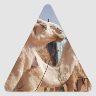 Camel Desert Middle East Peace Love Nature Destiny Triangle Stickers
