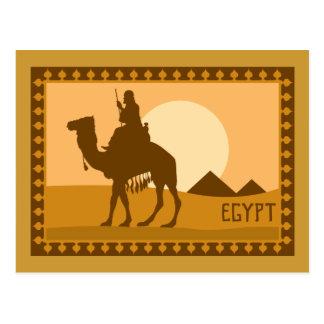 Camel Egypt Postcard