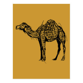 Camel Encrypted Postcard