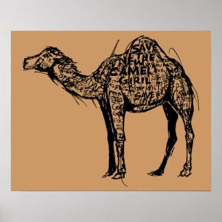 Camel Encrypted Poster