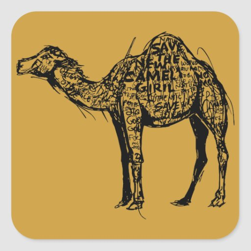 Camel Encrypted Square Sticker