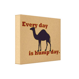 """Camel """"Every Day is Hump Day"""" Canvas Print"""
