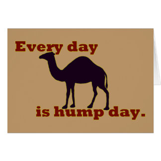 "Camel ""Every Day is Hump Day"" Greeting Cards"