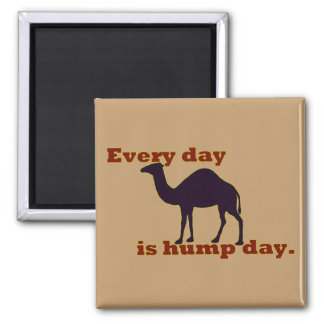 "Camel ""Every Day is Hump Day"" Magnet"