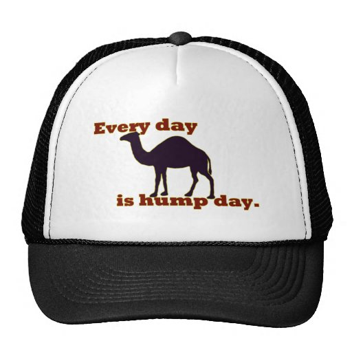 """Camel """"Every Day is Hump Day"""" Mesh Hats"""