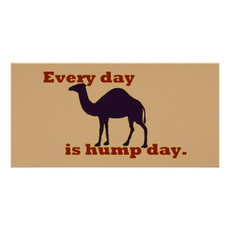 """Camel """"Every Day is Hump Day"""" Photo Card"""