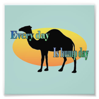 Camel - Every Day is Hump Day Photo Print