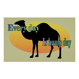 Camel - Every Day is Hump Day Posters
