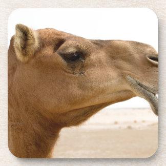 Camel face beverage coasters