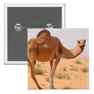 Camel for Arabs Square Pin