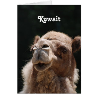 Camel from Kuwait Greeting Card
