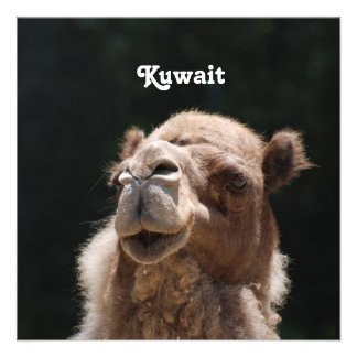 Camel from Kuwait Personalized Invite
