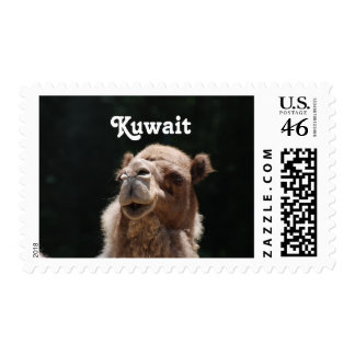 Camel from Kuwait Stamps
