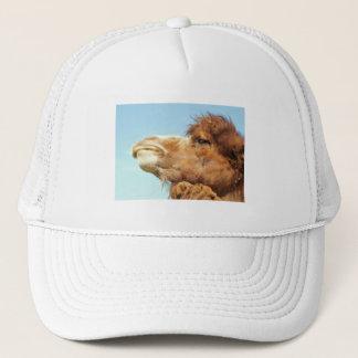 Camel - Hat