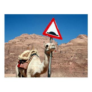 camel hump jordan post card