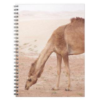 Camel in desert spiral notebook