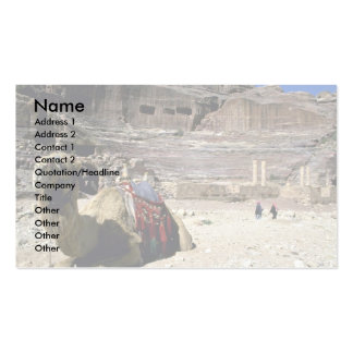 Camel in front of Roman Theater, Jordan Double-Sided Standard Business Cards (Pack Of 100)