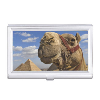Camel in front of the pyramids of Giza, Egypt, Business Card Case