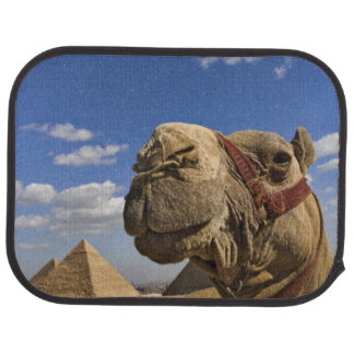 Camel in front of the pyramids of Giza, Egypt, Car Floor Mat